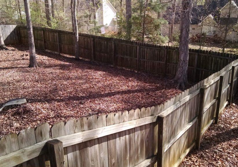 Fence Restoration - Before